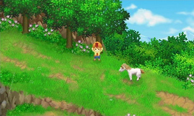 Harvest Moon: The Tale of Two Towns Screenshot