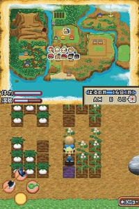 Harvest Moon: Island of Happiness screenshot