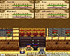 Rondo of Swords screenshot - click to enlarge