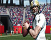 Madden NFL 11 screenshot - click to enlarge
