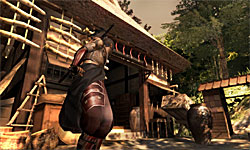 Tenchu Z screenshot